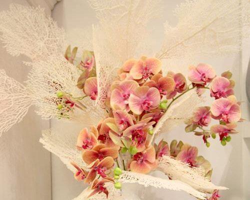campo_fiori_sole_sereno_4