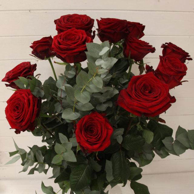 Favorito Confezione di rose rosse extra da 51 a 100 - Campo dei Fiori  MM51