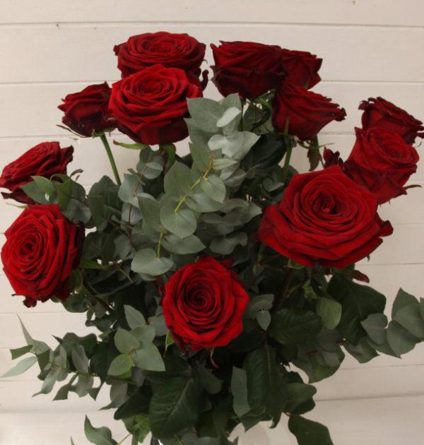 8c IMG_2827 confezione di dodici rose rosse extra (FILEminimizer)